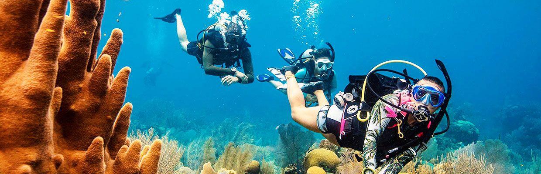 Dykkercertifikat og prøvedyk