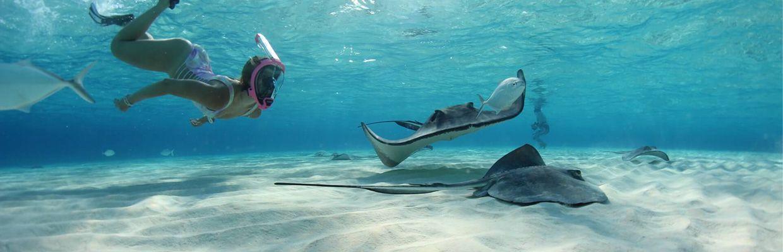 Snorkeludstyr til eventyr