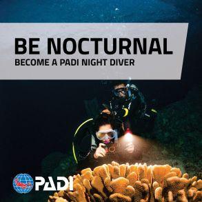 Night Diver Specialty